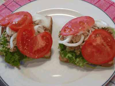Ψωμί του τοστ με τόνο (γρήγορο-εύκολο-λίγες-θερμίδες)